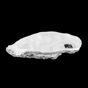 PORDAMSA Sublime Collection Oyster Plate 포르담사 굴 접시